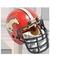 Calgary Stampeders helmet